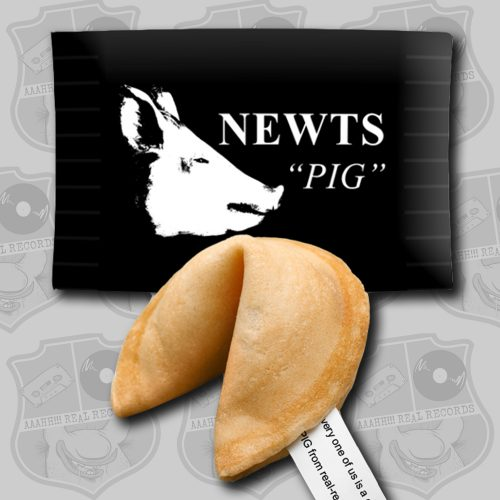 Newts - Pig [Fortune Cookie]
