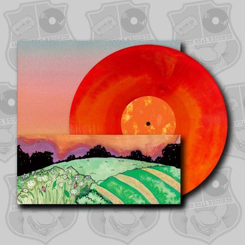 Tim Holehouse - Come [LP]