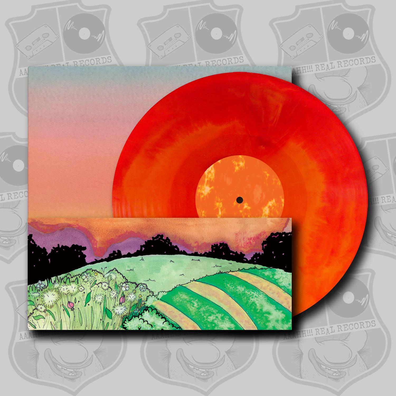 Tim Holehouse – Come [LP, CD]